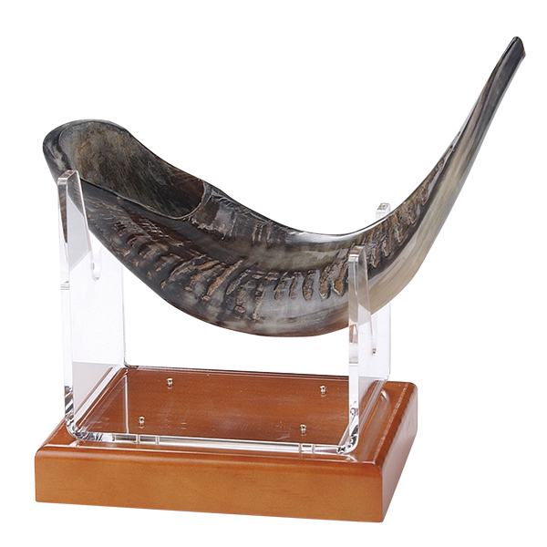 Shofar and Stands